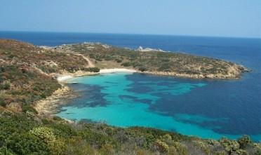 Asinara-escursioni-sub1