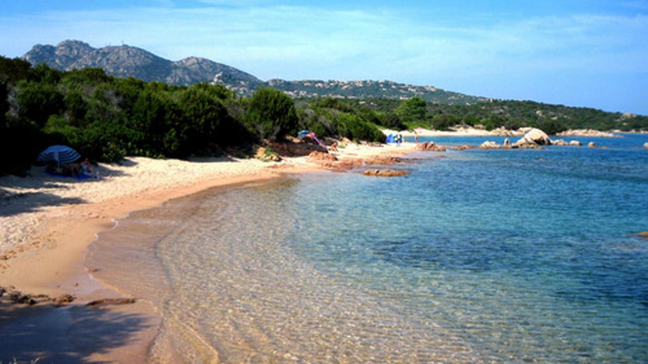 Matrimonio Spiaggia Olbia : Olbia diciassette tonnellate di rifiuti raccolti nel