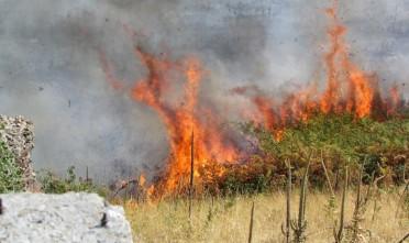 incendi 2