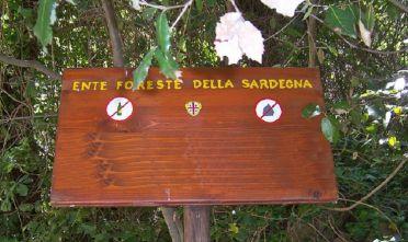 ente foreste sardegna