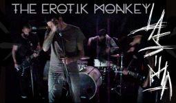 erotik monkey 1