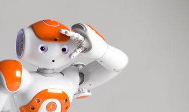 1nao_1 robot