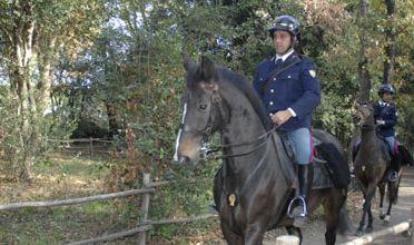 Scuola polizia a cavallo chiuder l 39 1 luglio l 39 appello di for Scuola burgo