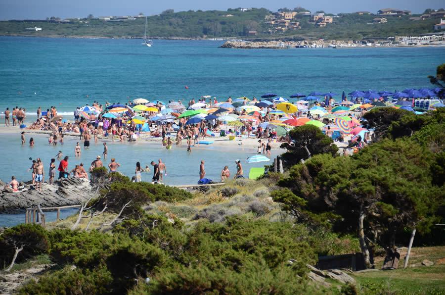 La Pelosa Spiaggia A Numero Chiuso 1 500 Posti E 3 50 Euro A