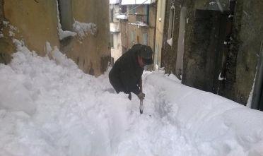 desulo neve