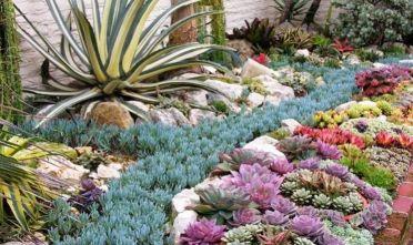 A milis tempo di primavera in giardino col mondo delle for Creazioni giardini