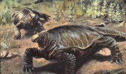 alierasauro-1