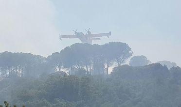 Canadair incendio carbonia 3